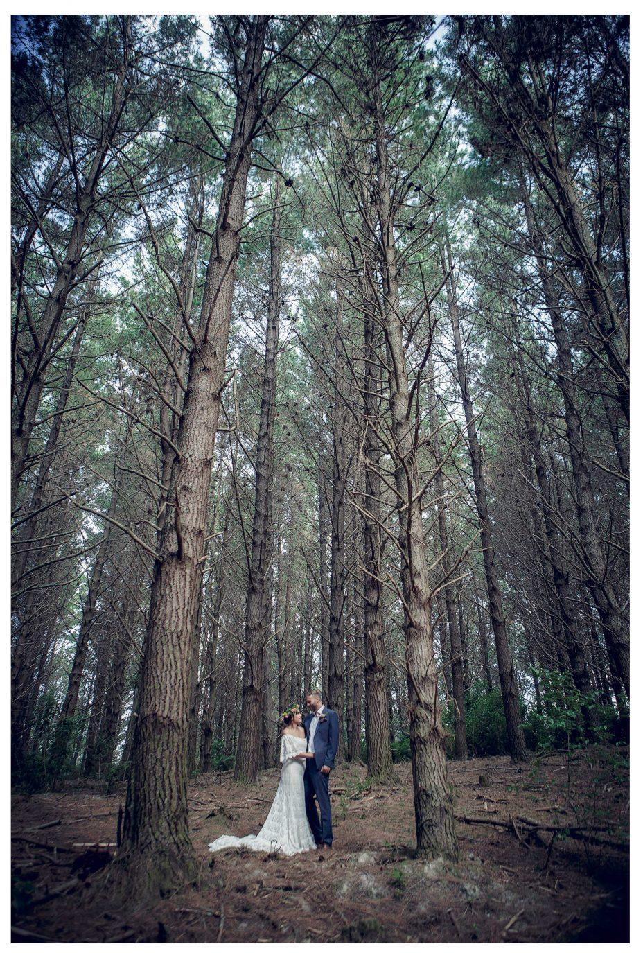 Creative wedding shoot,Bride and groom amoung huge trees, Riverhead Forrest wedding photo, Kumeu Valley