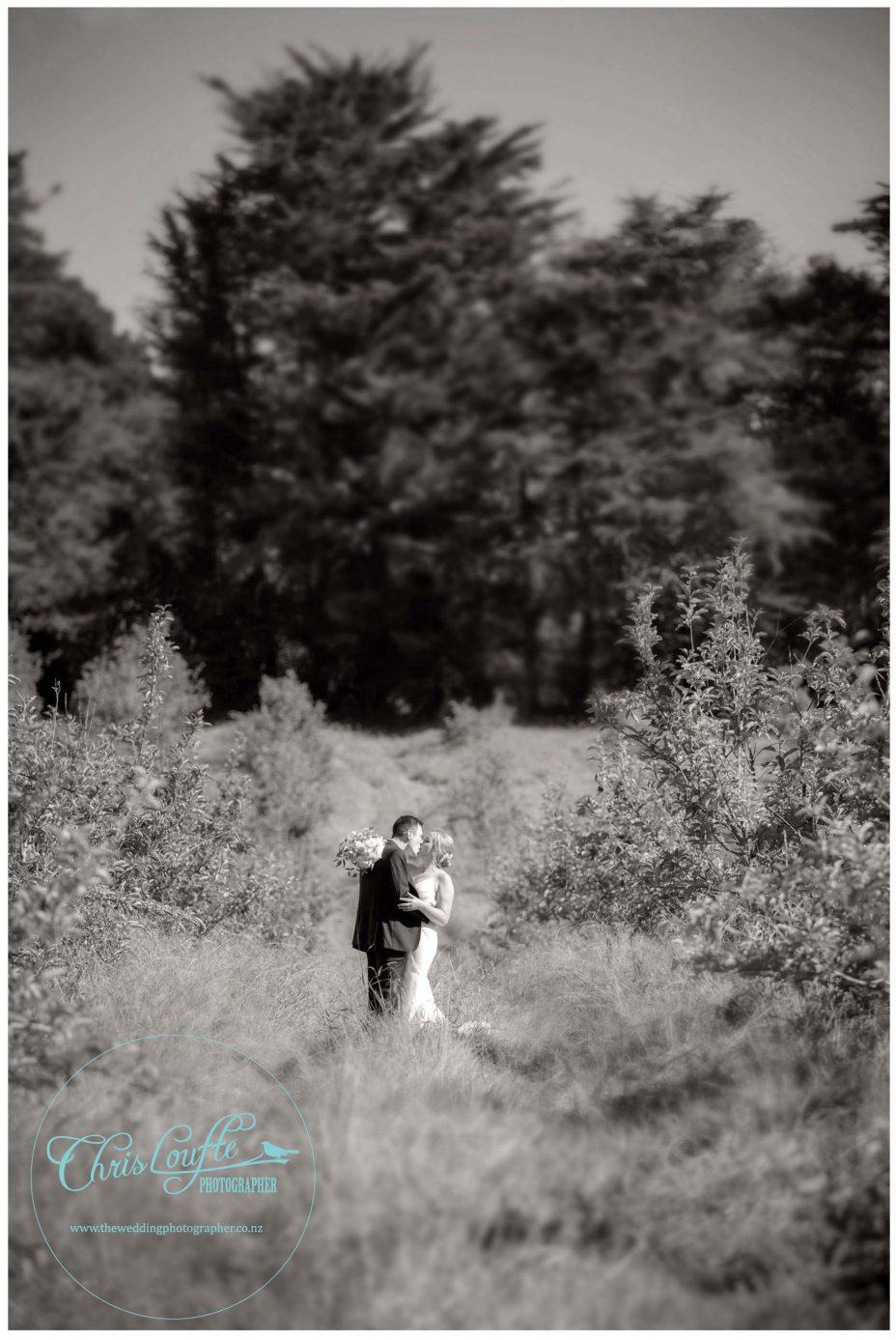 Bride and groom in romantic Kumeu Orchard