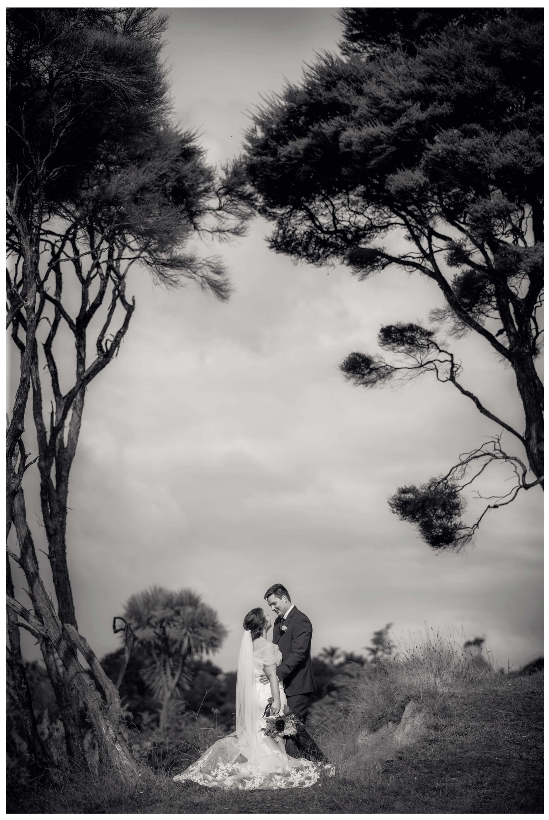 Creative wedding photo of Bride and groom under Manuka trees in Kumeu
