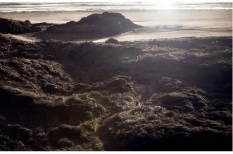 Bride and groom walk through dunes at Bethells Beech Auckland at sunset