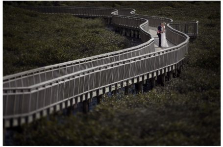 Bride and groom kiss on a snaking boardwalk over mangroves in Auckland