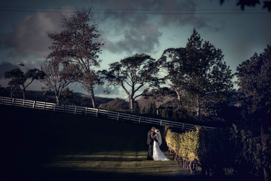 Scenic wedding photo of bride and groom at sunset in the vines at The Hunting Lodge Waimauku for a photo taken by Kumeu wedding photographer Chris Loufte.
