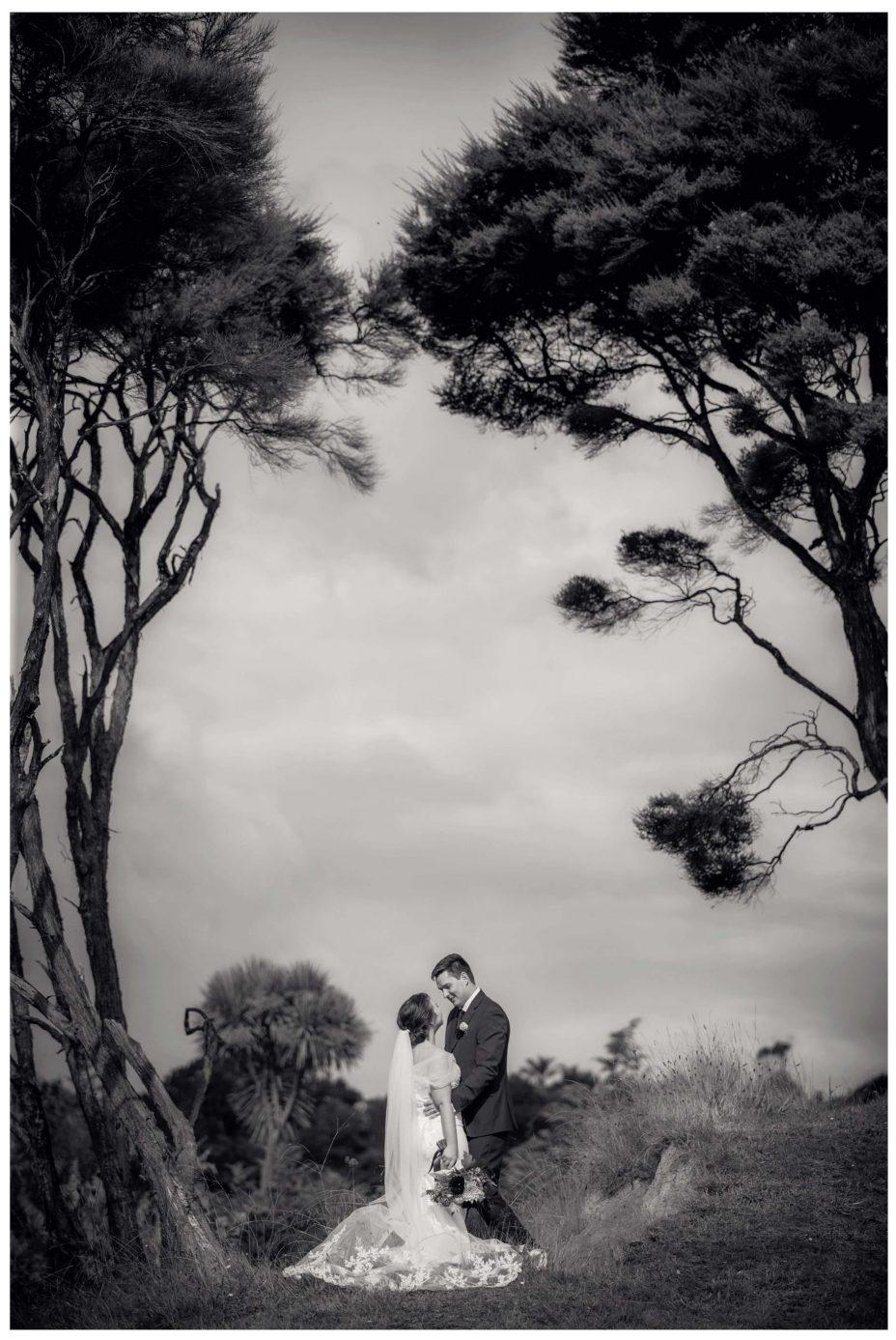 Creative wedding photo of Bride and groom under Manuka trees in Kumeu